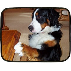 Bernese Mountain Dog Begging Fleece Blanket (Mini)