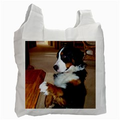 Bernese Mountain Dog Begging Recycle Bag (One Side)