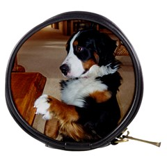 Bernese Mountain Dog Begging Mini Makeup Bags