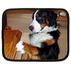 Bernese Mountain Dog Begging Netbook Case (XL)