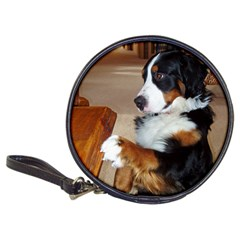 Bernese Mountain Dog Begging Classic 20-CD Wallets