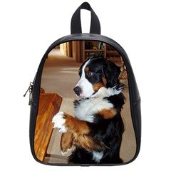 Bernese Mountain Dog Begging School Bags (Small)