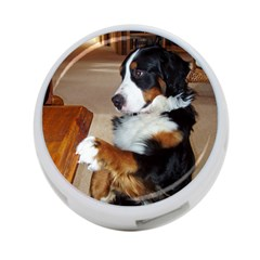 Bernese Mountain Dog Begging 4-Port USB Hub (One Side)