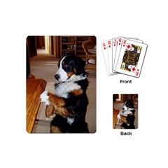 Bernese Mountain Dog Begging Playing Cards (Mini)