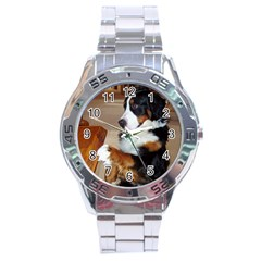 Bernese Mountain Dog Begging Stainless Steel Analogue Watch