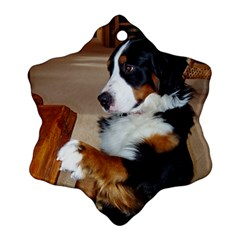 Bernese Mountain Dog Begging Snowflake Ornament (Two Sides)