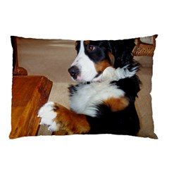 Bernese Mountain Dog Begging Pillow Case (Two Sides)