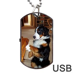 Bernese Mountain Dog Begging Dog Tag USB Flash (Two Sides)