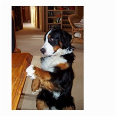 Bernese Mountain Dog Begging Small Garden Flag (Two Sides)