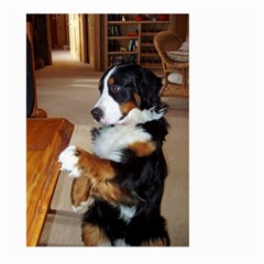 Bernese Mountain Dog Begging Large Garden Flag (Two Sides)