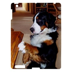 Bernese Mountain Dog Begging Apple iPad 3/4 Hardshell Case