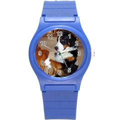 Bernese Mountain Dog Begging Round Plastic Sport Watch (S)