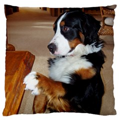 Bernese Mountain Dog Begging Large Cushion Case (One Side)
