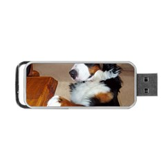 Bernese Mountain Dog Begging Portable USB Flash (Two Sides)