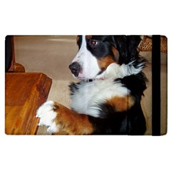 Bernese Mountain Dog Begging Apple iPad 3/4 Flip Case