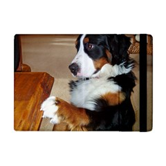 Bernese Mountain Dog Begging Apple iPad Mini Flip Case