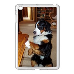 Bernese Mountain Dog Begging Apple iPad Mini Case (White)
