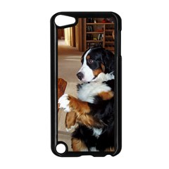 Bernese Mountain Dog Begging Apple iPod Touch 5 Case (Black)