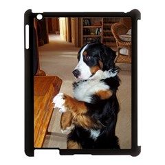 Bernese Mountain Dog Begging Apple iPad 3/4 Case (Black)