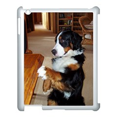 Bernese Mountain Dog Begging Apple iPad 3/4 Case (White)