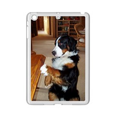 Bernese Mountain Dog Begging iPad Mini 2 Enamel Coated Cases