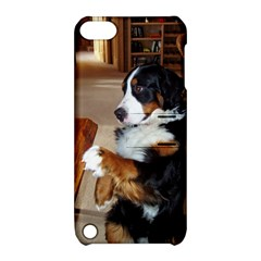 Bernese Mountain Dog Begging Apple iPod Touch 5 Hardshell Case with Stand