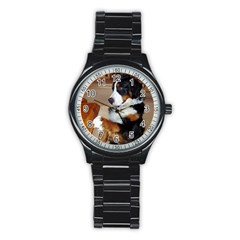 Bernese Mountain Dog Begging Stainless Steel Round Watch