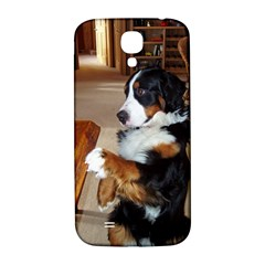 Bernese Mountain Dog Begging Samsung Galaxy S4 I9500/I9505  Hardshell Back Case