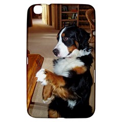 Bernese Mountain Dog Begging Samsung Galaxy Tab 3 (8 ) T3100 Hardshell Case