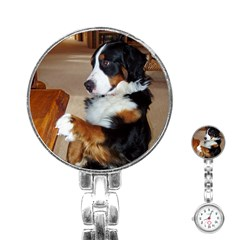 Bernese Mountain Dog Begging Stainless Steel Nurses Watch
