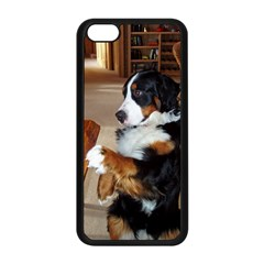 Bernese Mountain Dog Begging Apple iPhone 5C Seamless Case (Black)