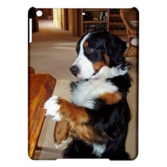 Bernese Mountain Dog Begging iPad Air Hardshell Cases