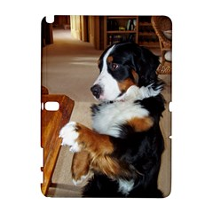 Bernese Mountain Dog Begging Galaxy Note 1