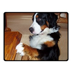 Bernese Mountain Dog Begging Double Sided Fleece Blanket (Small)
