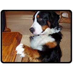 Bernese Mountain Dog Begging Double Sided Fleece Blanket (Large)