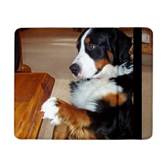 Bernese Mountain Dog Begging Samsung Galaxy Tab Pro 8.4  Flip Case