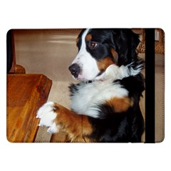 Bernese Mountain Dog Begging Samsung Galaxy Tab Pro 12.2  Flip Case