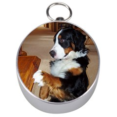 Bernese Mountain Dog Begging Silver Compasses