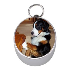 Bernese Mountain Dog Begging Mini Silver Compasses