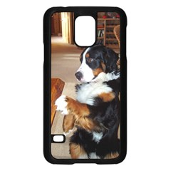 Bernese Mountain Dog Begging Samsung Galaxy S5 Case (Black)