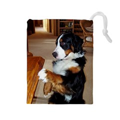 Bernese Mountain Dog Begging Drawstring Pouches (Large)