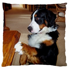 Bernese Mountain Dog Begging Standard Flano Cushion Case (Two Sides)