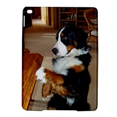 Bernese Mountain Dog Begging iPad Air 2 Hardshell Cases