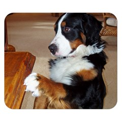Bernese Mountain Dog Begging Double Sided Flano Blanket (Small)