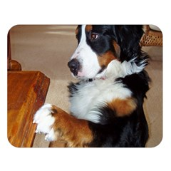 Bernese Mountain Dog Begging Double Sided Flano Blanket (Large)