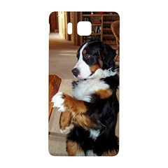 Bernese Mountain Dog Begging Samsung Galaxy Alpha Hardshell Back Case