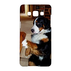 Bernese Mountain Dog Begging Samsung Galaxy A5 Hardshell Case