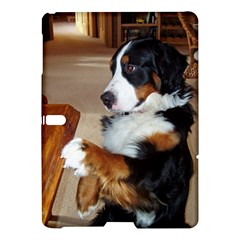 Bernese Mountain Dog Begging Samsung Galaxy Tab S (10.5 ) Hardshell Case