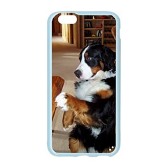 Bernese Mountain Dog Begging Apple Seamless iPhone 6/6S Case (Color)