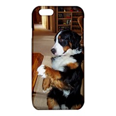 Bernese Mountain Dog Begging iPhone 6/6S TPU Case